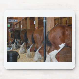 Horses rear ends mouse pad