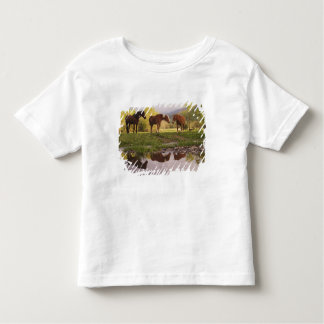 Horses reflected in small stream, Cades Cove, Toddler T-shirt