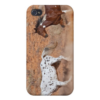 Horses roaming the Big Horn MT of Shell Wyoming. 2 iPhone 4 Cases