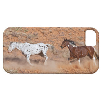 Horses roaming the Big Horn MT of Shell Wyoming. 2 iPhone SE/5/5s Case
