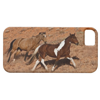 Horses roaming the Big Horn MT of Shell Wyoming. iPhone SE/5/5s Case