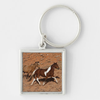 Horses roaming the Big Horn MT of Shell Wyoming. Keychain