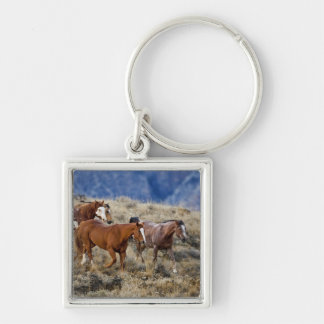 Horses roaming the scenic hills of the Big Horn 2 Keychain