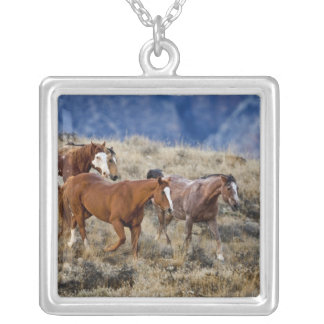 Horses roaming the scenic hills of the Big Horn 2 Square Pendant Necklace