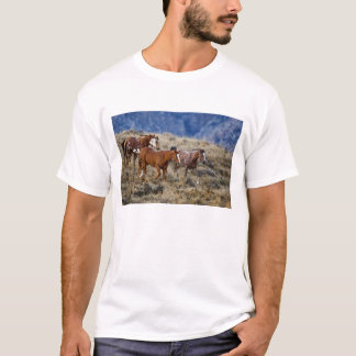 Horses roaming the scenic hills of the Big Horn 2 T-Shirt