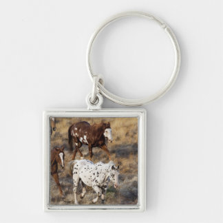 Horses roaming the scenic hills of the Big Horn Keychain