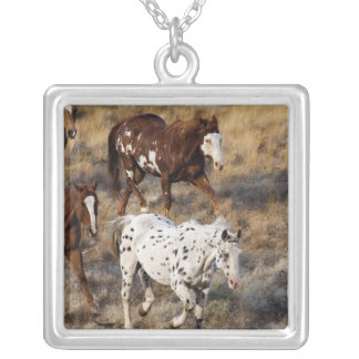 Horses roaming the scenic hills of the Big Horn Square Pendant Necklace