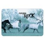 Horses ROCK Magnet