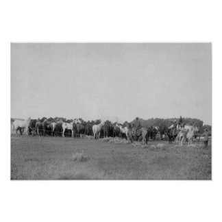 Horses Rounded up by Cowboys Photograph Poster