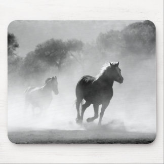 Horses running black and white beautiful scenery mousepads