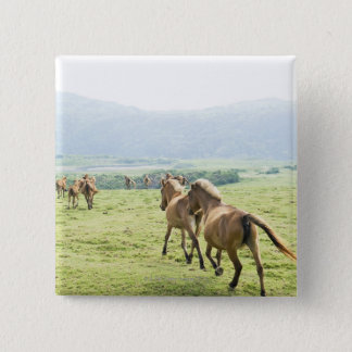 Horses running button