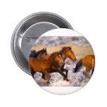 Horses running buttons
