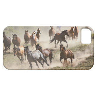 Horses running during roundup, Montana iPhone 5 Cases