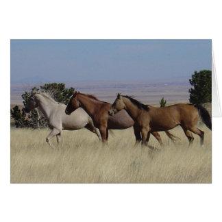 Horses Running Free Card