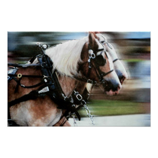 Horses running horse drawn carriage poster photo