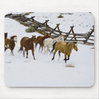 Horses Running in Snow Mouse Pad