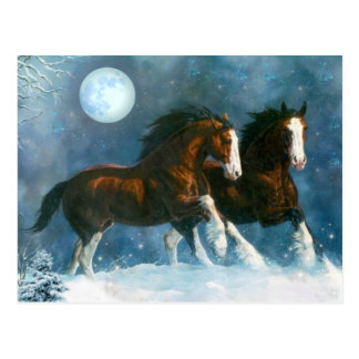Horses Running In The Snow Postcard