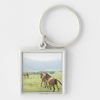 Horses running keychains