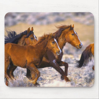 Horses running mouse pad