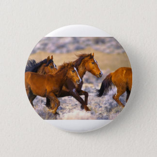 Horses running pinback button