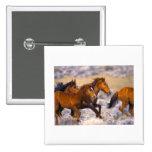 Horses running pinback buttons