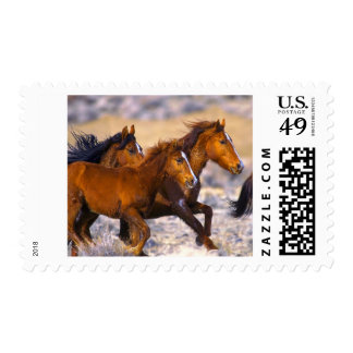 Horses running postage stamp