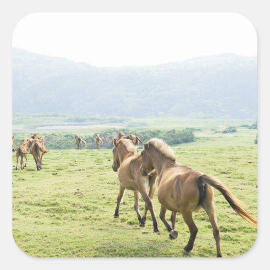 Horses running square sticker