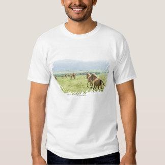 Horses running t shirt