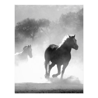 Horses Running Through The Wild Letterhead