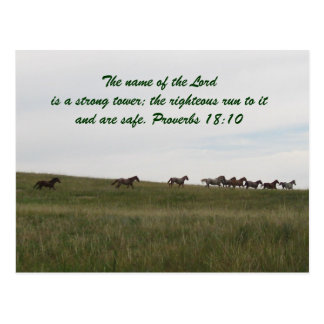 Horses running with scripture Post Card
