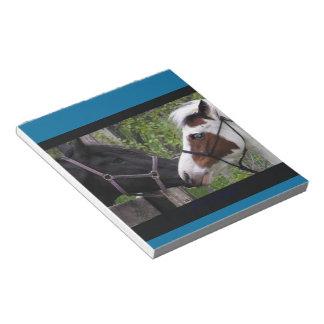 Horses Scratch Pads