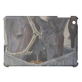 Horses sharing cover for the iPad mini