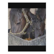 Horses sharing flyer
