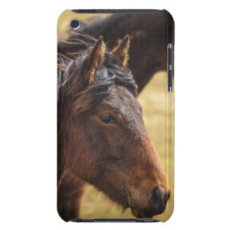 Horses Side By Side Barely There iPod Covers