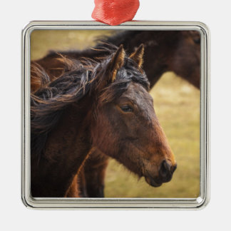 Horses Side By Side Ornaments