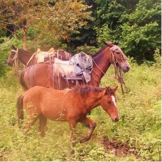 horses south america statuette