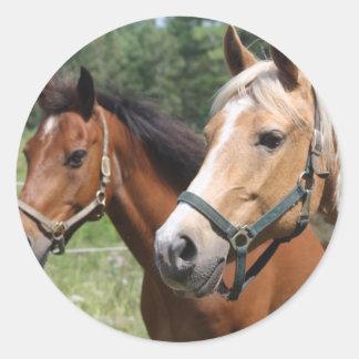 Horses Round Stickers