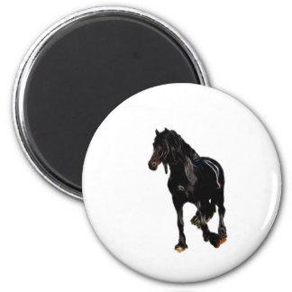 Horses sudden turn magnet