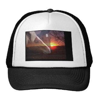 Horses Sunrise Trucker Hat