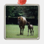 Horses - Thoroughbred, Mare And Foal, Christmas Tree Ornament