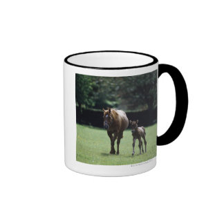 Horses - Thoroughbred, Mare And Foal, Ringer Mug