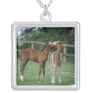 Horses - Thoroughbreds, Foals, Silver Plated Necklace