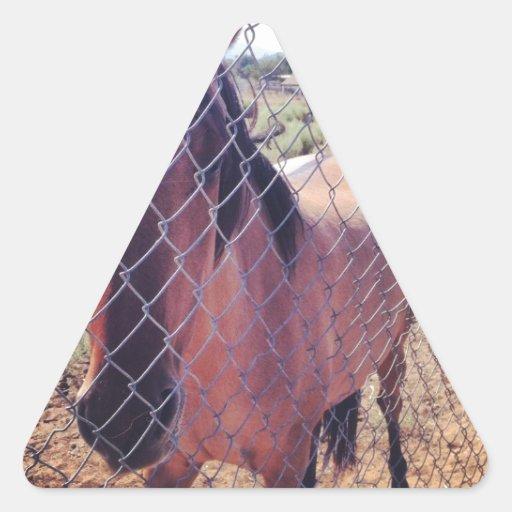 Horses Triangle Sticker