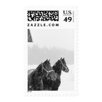 Horses USPS Christmas Card Postage Stamp 2017