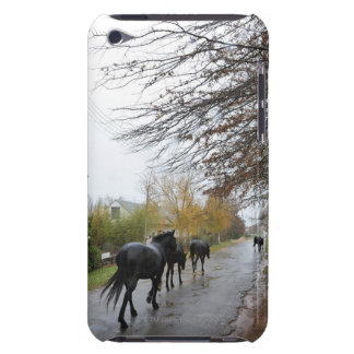 Horses walking down Oak Street in rain, Greyton, Barely There iPod Cover