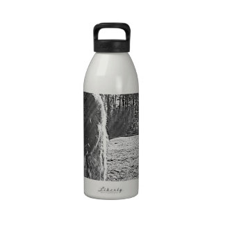 horses reusable water bottle
