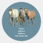 Horses Wild and Wonderful Address Label Classic Round Sticker