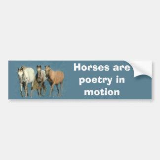 Horses Wild and Wonderful Bumper Sticker