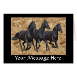 Horses Wild Card