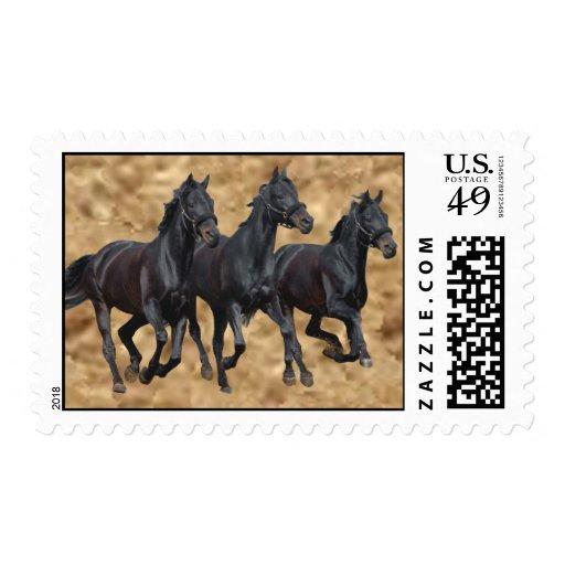 Horses Wild  Postage Stamp